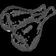 Hähnchenkeulen